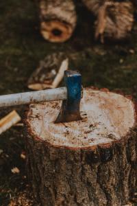 axe in block of wood